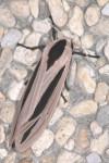 Erebidae - Arctiinae - Creatonos gangis - 20 mm - Bulusan lake - 3.11.2015